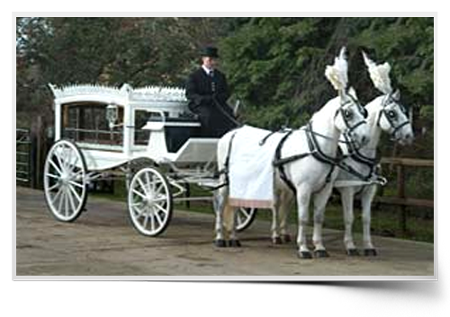 Dotteridge Carriage